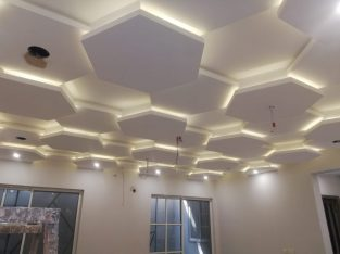 Falae ceiling contractor