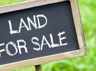 25 Acre Plot for sale