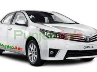 Toyota Corolla XLI 2019 white color for Sale