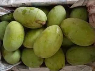 Mangoestan