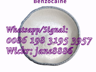 Local Anesthetic Powder Benzocaine for Anti-Paining CAS 94-09-7