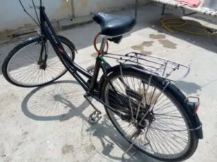 cycle full size for sale in karachi