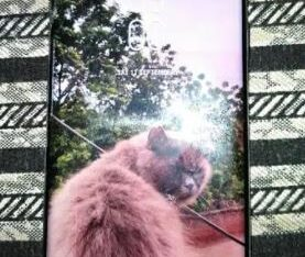 Samsung S9 Plus 128GB for sale in faislabad